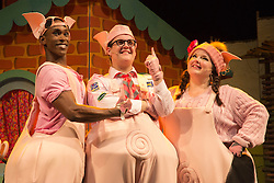 "© Licensed to London News Pictures. 05/08/2015. London, UK. L-R: Taofique Folarin, Daniel Buckley and Leanne Jones. West End premiere of the children's story ""The 3 Little Pigs"" at the Palace Theatre starring Simon Webbe as Wolf, Alison Jiear as Mother, Leanne Jones as Bee, Taofique Folarin as Bar and Daniel Buckley as Q. The show runs from 5 August to 6 September 2015. Photo credit: Bettina Strenske/LNP"
