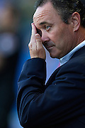 VALENCIA, SPAIN - JUNE 01: Coach of Levante UD Juan Ignacio Martinez  reacts during the Liga BBVA between Levante UD and Real Betis Balompie at the Ciutat de Valencia stadium on June 01, 2013 in Valencia, Spain. (Photo by Aitor Alcalde Colomer).