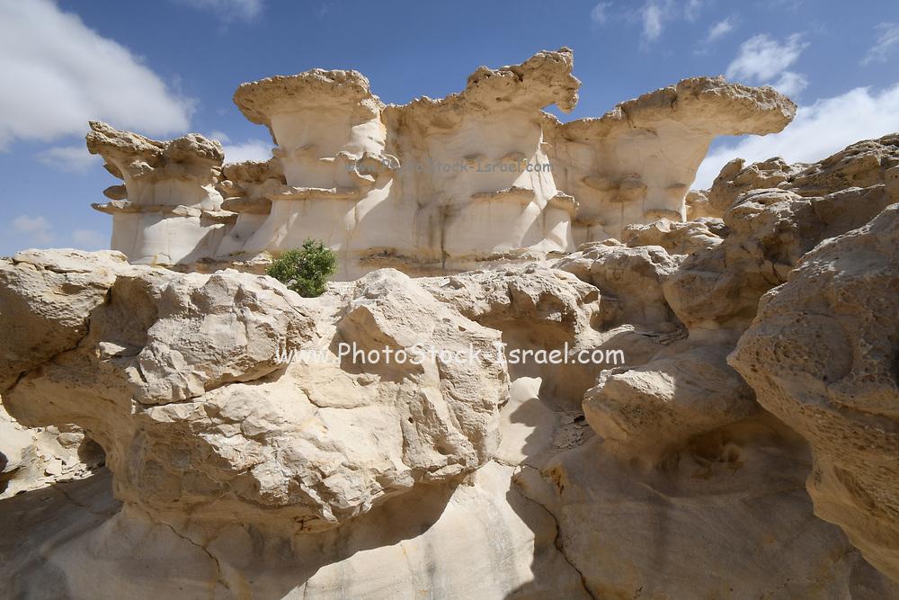 Wadi Hawarim, Negev Desert, Israel