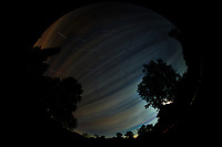 Star trails over New Jersey. Composite of images (03:00 to 03:59) taken with a Nikon D850 camera and 8-15 mm fisheye lens (ISO 100, 10 mm, f/4, 30 sec). Raw images processed with Capture One Pro, and the composite generated using Photoshop CC (statistics, maximum).