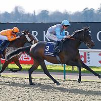 Believe It - Shane Kelly wins from Pyroclastic - Pat Cosgrave<br /> The Ladbrokes Handicap Cl6 <br /> Lingfield Park 24/2/16.<br /> ©Cranhamphoto.com