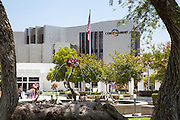Cerritos Millennium Library and Amaryllis Fountain