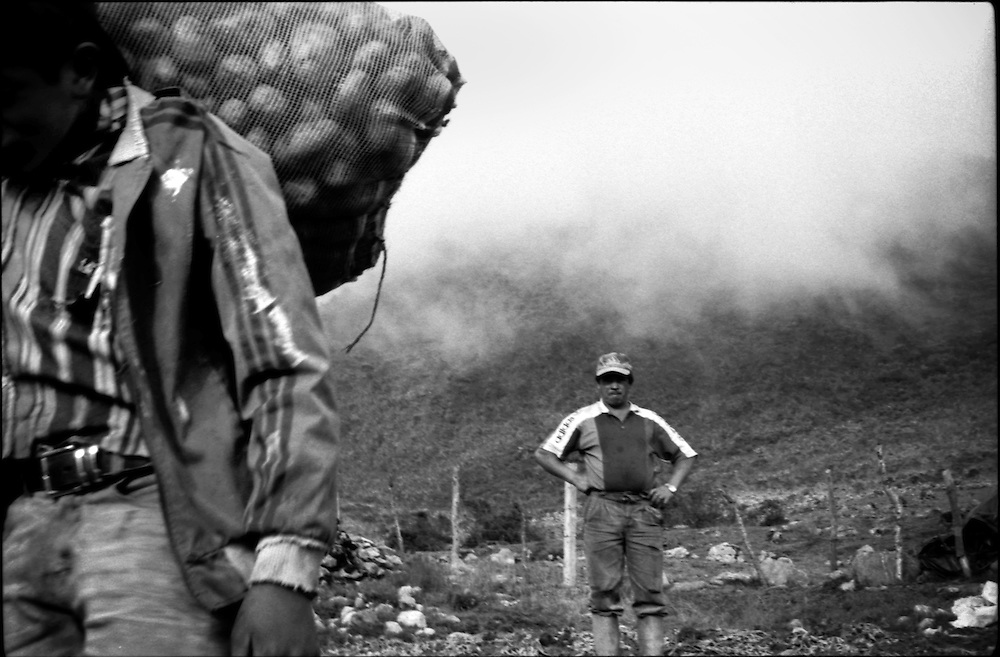 DAILY VENEZUELA / VENEZUELA COTIDIANA.Paramo La Culata, Merida State - Venezuela 2000.(Copyright © Aaron Sosa)