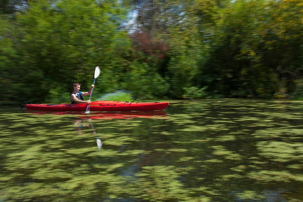North America, United States, Washington, Bellevue, teenage boy kayaking  in Mercer Slough Nature Park, blurred motion.  MR