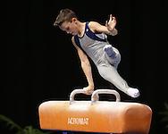 Pommel Horse, May 22, 2014 - GYMNASTICS : Australian National Gymnastics Championships, Hisense Arena, Melbourne, Victoria, Australia. Credit: Lucas Wroe / Winkipop Media