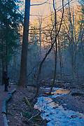 Winter, Nolde Forest, Reading, Berks County PA