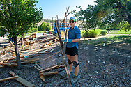 Megan Mizuta shows the branch she helped construct which includes a branch from a tree she planted several years ago. The constructed branch will be incorporated into MING Studios artist-in-residence Han Seok Hyun large scale, permanent sculpture, entitled Reverse-Rebirth at Idaho Botanical Garden on July 21, 2018 in Boise, Idaho.<br /> <br /> Han Seok Hyun connected with the Boise community through gathering furniture and cast off wood pieces, seeds and plants, which will be used to build up his sculpture.<br /> <br /> The work of Korean artist Han Seok Hyun addresses the dichotomy of ''artificial nature,'' calling attention to man&rsquo;s handling of the natural world observable in contemporary urban environments. In Reverse-Rebirth, Han takes nature into his own hands. Reclaimed wood, discarded furniture, native plants, and locally foraged seeds compose the monumental tree-like sculpture that continuously evolves over time and throughout the seasons. The work reaches for a symbiosis with the given environment, while Han pushes the boundaries of a domesticated relationship with Mother Nature.
