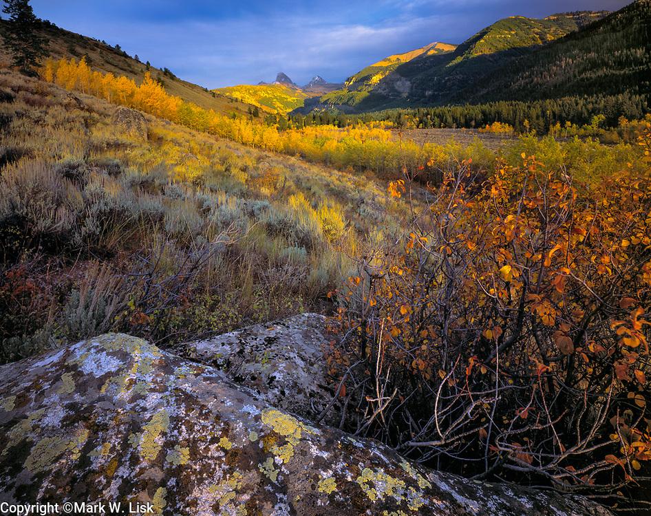 Fall colors fill the slopes of the Teton Basin near Driggs Idaho, Targhee National Forest.
