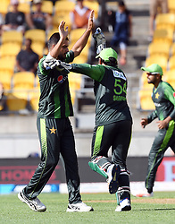 Pakistan's Rumman Raees, left, celebrates with Sarfraz Ahmed after dismissing New Zealand's Martin Guptill for 2 in the first T20 International Cricket match, Westpac Stadium, Wellington, New Zealand, Monday, January 22, 2018