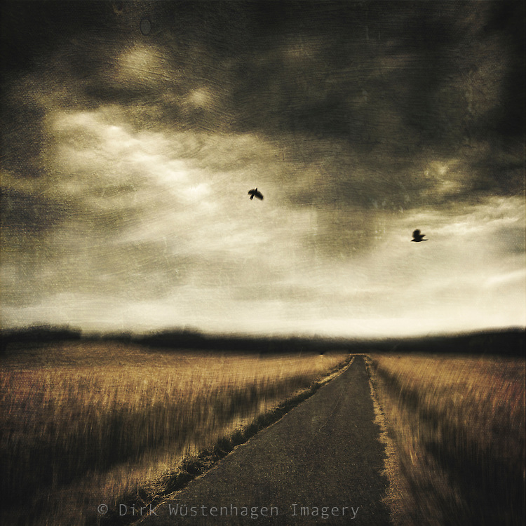 country road through fields - manipulated photograph