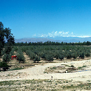 26 April 1976<br />