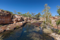 A freshwater waterhole in the King Leopold Ranges on Mt Hart.