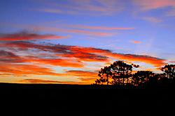 Final de tarde em São José dos Ausentes, Rio Grande do Sul FOTO: Eduardo Rocha/Preview.com