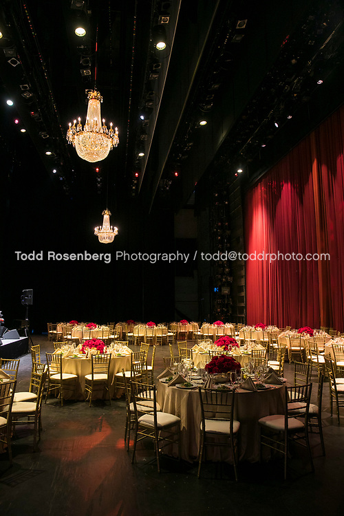 6/10/17 6:23:26 PM <br /> <br /> Young Presidents' Organization event at Lyric Opera House Chicago<br /> <br /> <br /> <br /> &copy; Todd Rosenberg Photography 2017