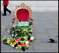 June 25, 2012- A Trafalgar Square pigeon tries a letucce from a just finished photocall by PETA using the Big Brother's diary room chair. Photo By Andre Camara/i-Images