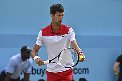 June 23, 2018 - London, England, United Kingdom - Novak Djokovic of Serbia serves against Jeremy Chardy of France during the semi final singles match on day six of Fever Tree Championships at Queen's Club, London on June 23, 2018. (Credit Image: © Alberto Pezzali/NurPhoto via ZUMA Press)