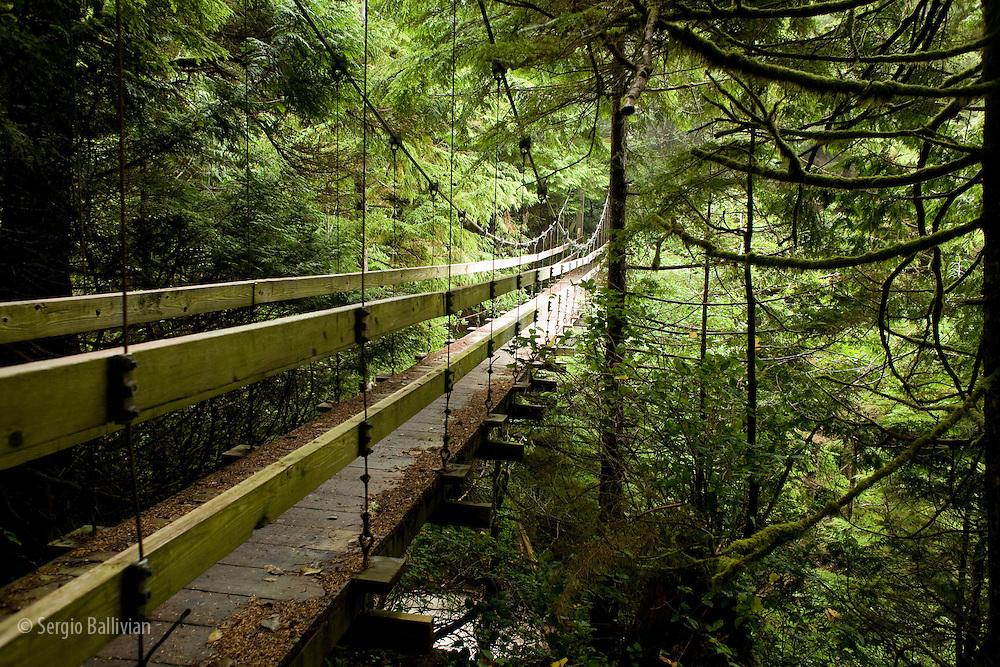 West Coast Trail - Day 3.  A modern hanging bridge crosses Billy Goat Creek.
