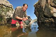 Dr. Jaime Bosch in search of the Majorcan midwife toad (Alytes muletensis). This pond is the habitat for the Majorcan midwife toad (Alytes muletensis) Torrent de s'Esmorcador, Majorca, Spain. | Zusammen mit den anderen Mitgliedern des spanisch-englischen Forscherteams fängt Dr. Jaime Bosch alle im kalten Wasser dieses Tümpels zu findenden Kaulquappen der Mallorca-Geburtshelferkröte (Alytes muletensis) ein. In Wasserflaschen verstaut werden sie in einem dreistündigen Fußmarsch bis zur nächsten Straße und anschließend mit dem Auto hinunter an die Küste gebracht. Dort erden sie in einem Raum des Marineland Aquariums in Las Palmas gehältert.