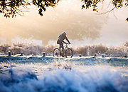 © Licensed to London News Pictures. 06/11/2014. Richmond, UK. A cyclist rides through a frosty scene. People and animals during a frosty start to the day on 6th November 2014. Temperature fell across the country overnight. Photo credit : Stephen Simpson/LNP