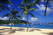 Image of tropical beach and water near Cruz Bay, Saint John, United States Virgin Islands, Caribbean