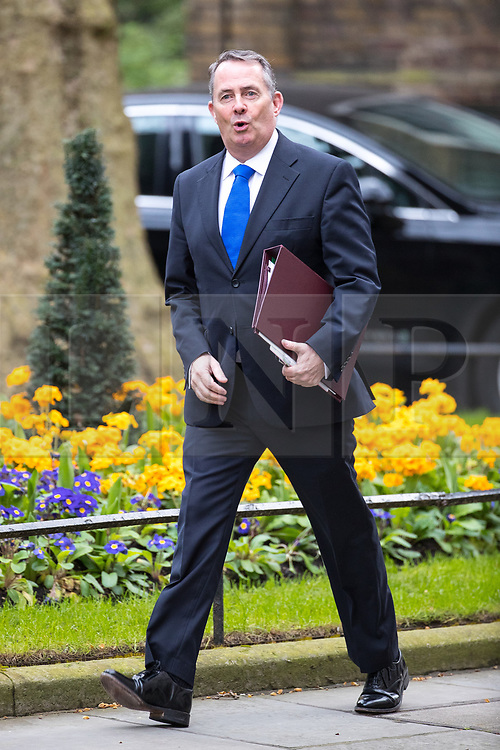 © Licensed to London News Pictures . 29/03/2017 . London , UK .  LIAM FOX arrives . Ministers arriving and leaving for a Cabinet meeting and Prime Minster's Questions , at 10 Downing Street , Westminster . Today (29th March 2017) the British Government will trigger Article 50 of the Lisbon Treaty and commence Britain's withdrawal from the European Union . Photo credit : Joel Goodman/LNP