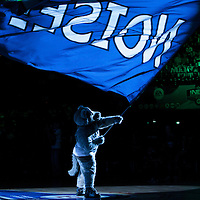 06 October 2010: The mascot of the Minnesota Timberwolves is seen during the Minnesota Timberwolves 106-100 victory over the New York Knicks, during 2010 NBA Europe Live, at the POPB Arena in Paris, France.