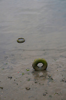 Old tyres submerged in mud in Dun Laoghaire harbour in Dublin Ireland