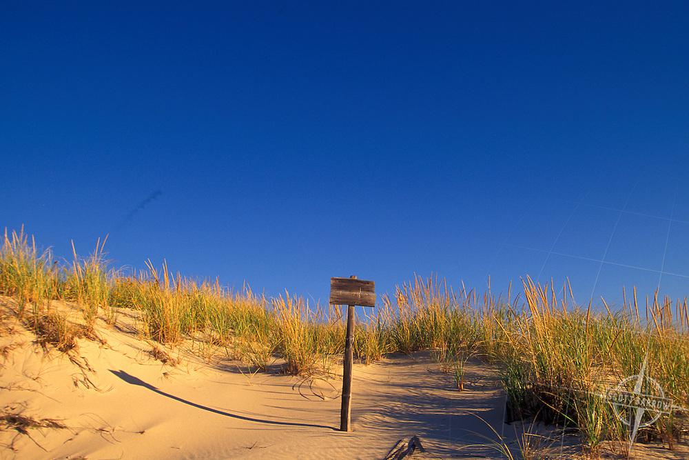 Sand Dune, Sign