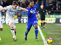 Football - 2018 / 2019 Premier League - Cardiff City vs. Everton<br /> <br /> Junior Hoilett of Cardiff City & Seamus Coleman of Everton, at Cardiff City Stadium.<br /> <br /> COLORSPORT/WINSTON BYNORTH