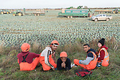 Migrant Workers Lincolnshire UK Brexitland