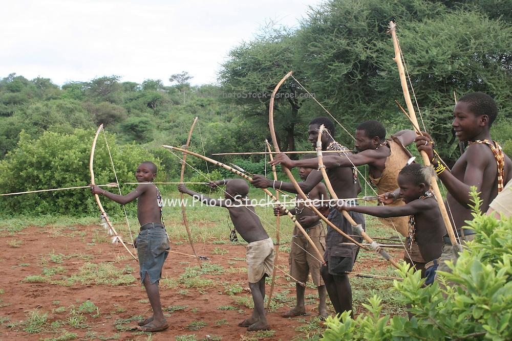 Africa, Tanzania, Lake Eyasi, Hadza men preparing the arrows before a hunting expedition Small tribe of hunter gatherers AKA Hadzabe Tribe April 2006