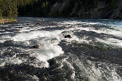 WY: Wyoming, Yellowstone National Park:.LeHardy Rapids on Yellowstone River..Photo #: yellow1083.Photo copyright Lee Foster, 510/549-2202, lee@fostertravel.com, www.fostertravel.com..