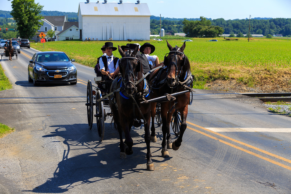 Strasburg, PA - June 19, 2016: Amish using two horses to pull a wagon on a county road in Lancaster County, PA.