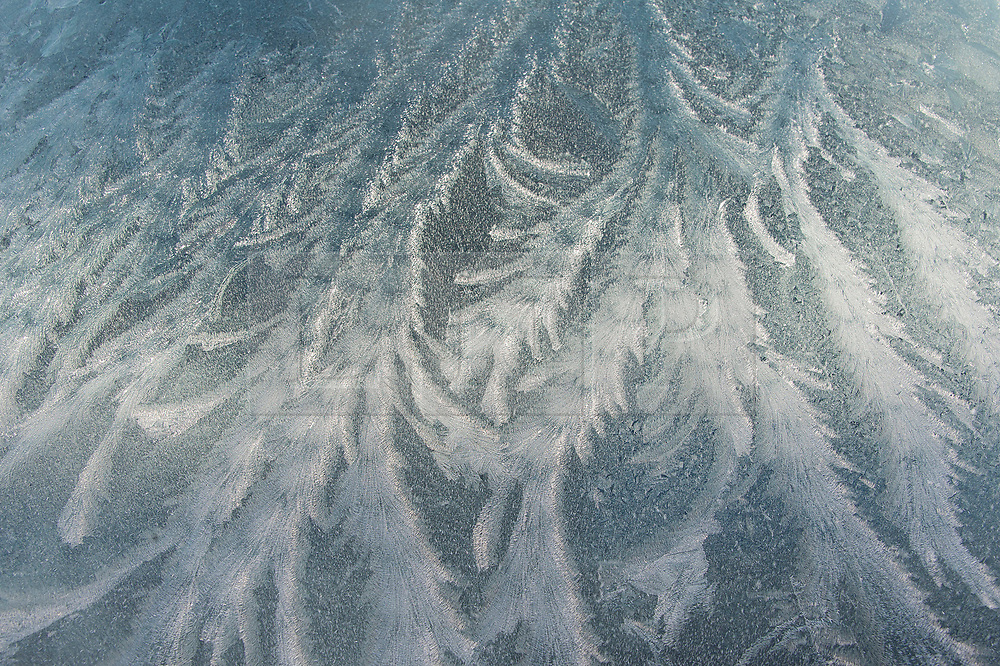 © Licensed to London News Pictures. 18/01/2020. Builth Wells, Powys, Wales, UK. Fern frost is seen on a car windscreen in Builth Wells in Powys, Wales, UK.after temperatures dropped to below freezing last night.  Photo credit: Graham M. Lawrence/LNP