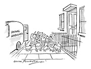 (Dogs gather outside a house being visited by the animal ambulance)