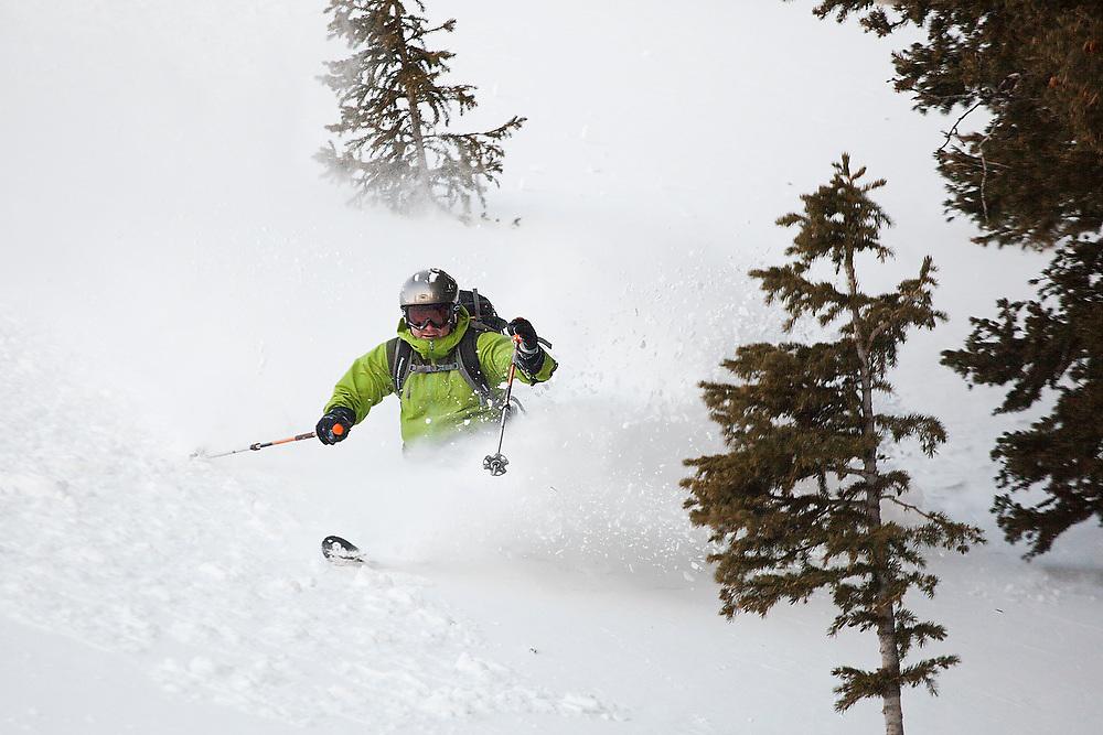 Judd MacRae skis deep powder in trees below Hayden Peak, San Juan Mountains, Colorado.