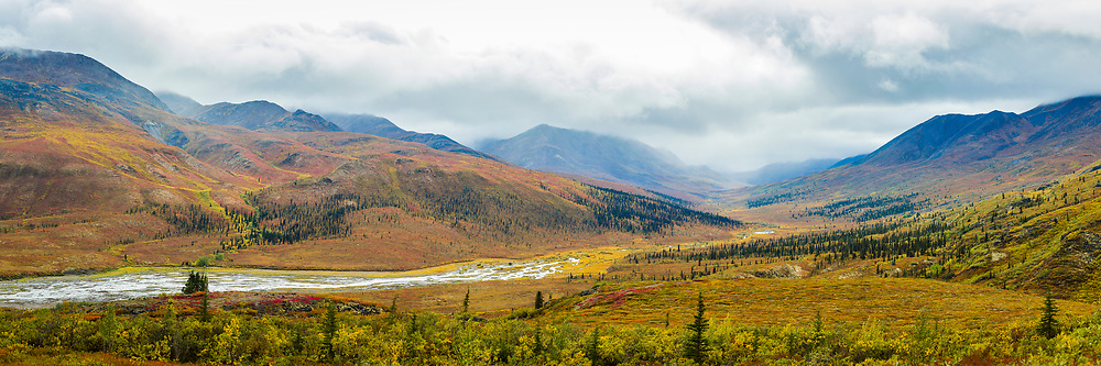Fall colours in Tombstone Territorial Park, Yukon.