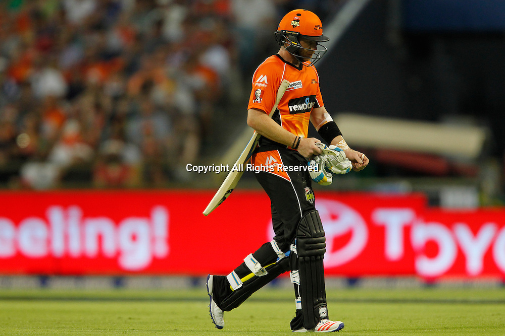 23.12.2016. WACA Ground, Perth, Australia. BBL Cricket League. Perth Scorchers versus Adelaide Strikers. Ian Bell walks from the field after being dismissed.