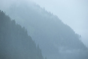Fog, Clouds, Ocean, Forest,  Mountains, Kenai Fjords National Park, Seward, Alaska