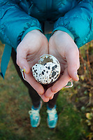 Woman holding a broken sea bird egg. Oregon Coast Trail. Oswald West State Park, OR