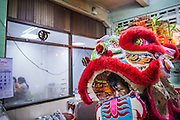 "10 FEBRUARY 2013 - BANGKOK, THAILAND: Lion Dancers perform in a small restaurant on Chinese New Year in the Chinatown section of Bangkok. Shop owners frequently invite Lion Dancers into the shops on the New Year to dance for a prosperous New Year. They then make a donation to the Lion Dance troupe. Bangkok has a large Chinese emigrant population, most of whom settled in Thailand in the 18th and 19th centuries. Chinese, or Lunar, New Year is celebrated with fireworks and parades in Chinese communities throughout Thailand. The coming year will be the ""Year of the Snake"" in the Chinese zodiac.    PHOTO BY JACK KURTZ"