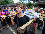 13 JULY 2016 - UBUD, BALI, INDONESIA:  A procession for an Ubud person cremated during the mass cremation Wednesday. Local people in Ubud exhumed the remains of family members and burned their remains in a mass cremation ceremony Wednesday. Almost 100 people will be cremated and laid to rest in the largest mass cremation in Bali in years this week. Most of the people on Bali are Hindus. Traditional cremations in Bali are very expensive, so communities usually hold one mass cremation approximately every five years. The cremation in Ubud will conclude Saturday, with a large community ceremony.     PHOTO BY JACK KURTZ