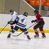 On Friday, January 31, 2014, Davis Kleen played hockey for CAHA (Capital Amateur Hockey Association) at the OEC Coliseum, in Columbus Ohio