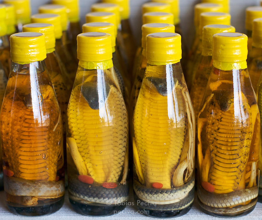 Bottles of Vietnamese snake wine for sale in the Mekong Delta, Vietnam. The wine is produced by letting a venomous snake infuse in rice wine for several months.