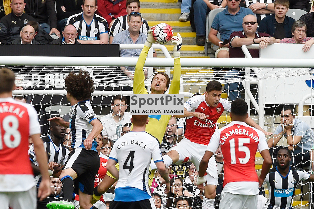 Tim Krul (left) and Gabriel (right) in the Newcastle United v Arsenal Barclays Premier League match at St James' Park Newcastle 09 August 2015<br /> <br /> (c) Greg Macvean / SportPix.org.uk