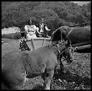 """A Estavannens la """"Poya 2000"""" a rassemblé des milliers de spectateurs assistant au cortêge des nombreuses associations, fanfares et groupes célèbrant les traditions rurales de la Gruyère. © Romano P. Riedo"""