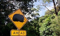A yellow caution wombat road sign, Australia