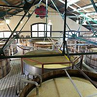 Four Roses Bourbon Distillery, Fermenting Room