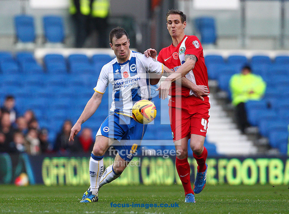 Picture by Paul Terry/Focus Images Ltd +44 7545 642257<br /> 09/11/2013<br /> Ashley Barnes of Brighton and Hove Albion and Matthew Kilgallon of Blackburn Rovers during the Sky Bet Championship match at the American Express Community Stadium, Brighton and Hove.