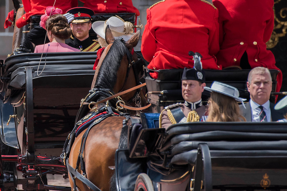 "Kate, Camilla and Harry (saluting) enter Buckingham Palace followed by Edward and Andrew - Trooping the Colour by the Irish Guards on the Queen's Birthday Parade. The Queen's Colour is ""Trooped"" in front of Her Majesty The Queen and all the Royal Colonels.  His Royal Highness The Duke of Cambridge takes the Colonel's Review for the first time on Horse Guards Parade riding his horse Wellesley. The Irish Guards are led out by their famous wolfhound mascot Domhnall and more than one thousand Household Division soldiers perform their ceremonial duty. The Soldiers will parade in the traditional ceremonial uniforms of the Household Cavalry, Royal Horse Artillery, and Foot Guards. They are accompanied by the Household Division Bands & Corps of Drums. London 17th June 2017."